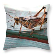 Colorful Grasshopper Throw Pillow