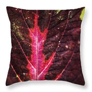 Colorful Leaf By Mother Nature Throw Pillow