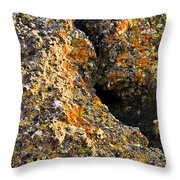 Colorful Lichens Throw Pillow