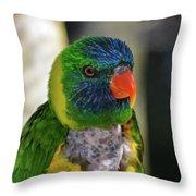 Colorful Lorikeet Throw Pillow