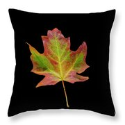 Colorful Maple Leaf Throw Pillow