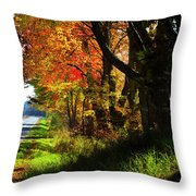 Colorful Maples Throw Pillow