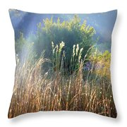 Colorful Morning Marsh Throw Pillow