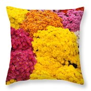 Colorful Mum Flowers Fine Art Abstract Photo Throw Pillow