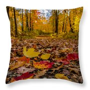 Colorful Path Throw Pillow
