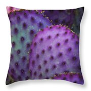 Colorful Rainbow Of Cactus Pads  Throw Pillow