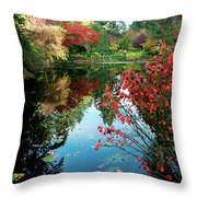 Colorful Reflection In Autumn Gardens. Throw Pillow
