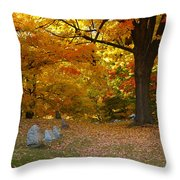 Colorful Rest Throw Pillow