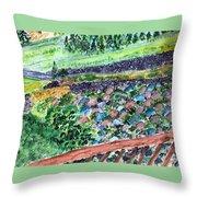 Colorful Rock Garden Throw Pillow