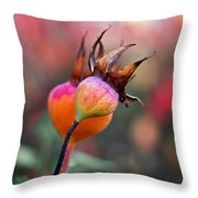 Colorful Rose Hips Throw Pillow