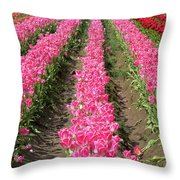 Colorful Rows Of Tulips Throw Pillow