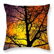 Colorful Silhouette Throw Pillow