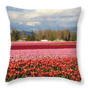 Colorful Skagit Valley Tulip Fields Panorama Throw Pillow