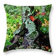 Colorful Stump Throw Pillow