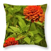Colorful Summer Flowers Throw Pillow