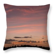 Colorful Sunset Over The Wetlands Throw Pillow