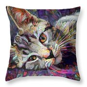 Colorful Tabby Kitten Throw Pillow
