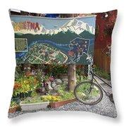 Colorful Talkeetna Throw Pillow