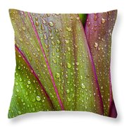 Colorful Ti Leaves Throw Pillow