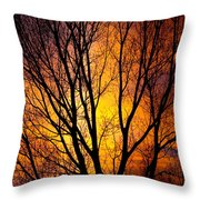 Colorful Tree Silhouettes Throw Pillow
