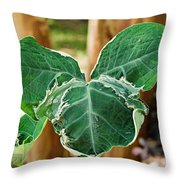 Colorful Tropical Foliage 1 Throw Pillow
