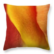 Colorful Tulip Closeup Abstract Throw Pillow