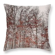 Colorful Winters Day Throw Pillow