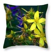 Colorful Wonder Throw Pillow