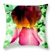 Colormax 3 Throw Pillow