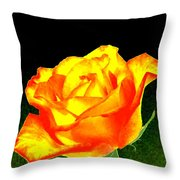 Colormax 4 Throw Pillow