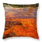 Colors And Layers Throw Pillow