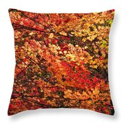 Colors Blowing In The Wind Throw Pillow by Lori Frisch