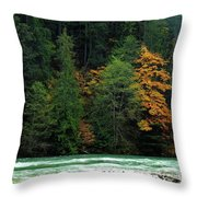 Colors In Nature Throw Pillow