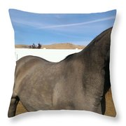 Colors Of Beauty Throw Pillow