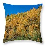 Colors Of Colorado  Throw Pillow