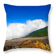Colors Of Costa Rica Throw Pillow