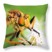 Colors Of Eye Throw Pillow