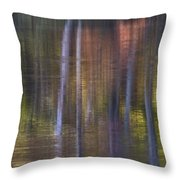 Colors Of Fall 03 Throw Pillow