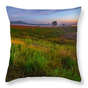 Colors Of Iowa  Throw Pillow