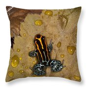 Colors Of Nature Throw Pillow