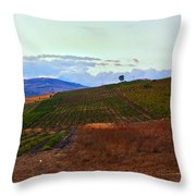 Colors Of Sicily Throw Pillow