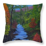 Colors Of The Blue Ridge Throw Pillow
