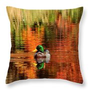 Colors Of The Morning Throw Pillow