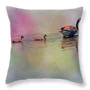 Colors Of The Rainbow Throw Pillow