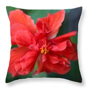 Colors Of The Tropics Hibiscus Throw Pillow
