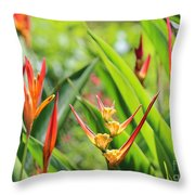 Colors Of The Tropics Throw Pillow
