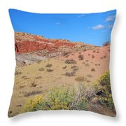 Colors Of The Utah Desert Throw Pillow