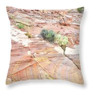 Colors Of Wash 3 In Valley Of Fire Throw Pillow