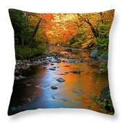 Colors On A Stream Throw Pillow