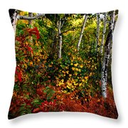 Colors On Mcclure Pass Throw Pillow